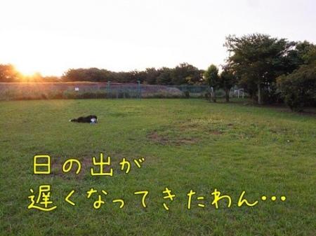 20110726-074305.jpg