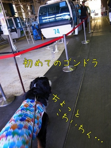 富士見パノラマリゾート ゴンドラ