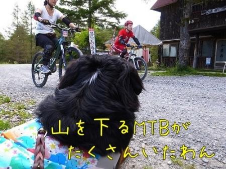 入笠山 MTB