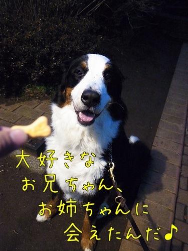 20120307-080103.jpg