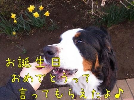 20120328-081655.jpg