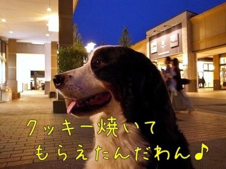 20120522-081357.jpg