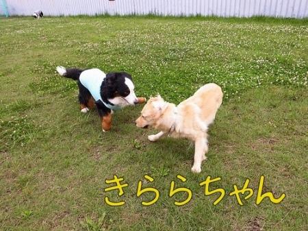 20120614-082050.jpg