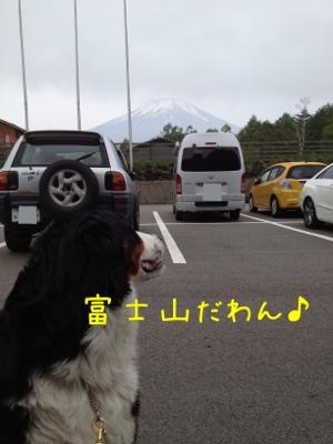 20120624-100319.jpg