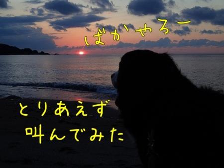 20121001-082304.jpg