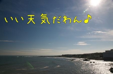 20121019-084429.jpg