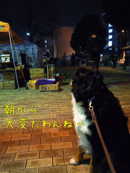 20121215-085833.jpg